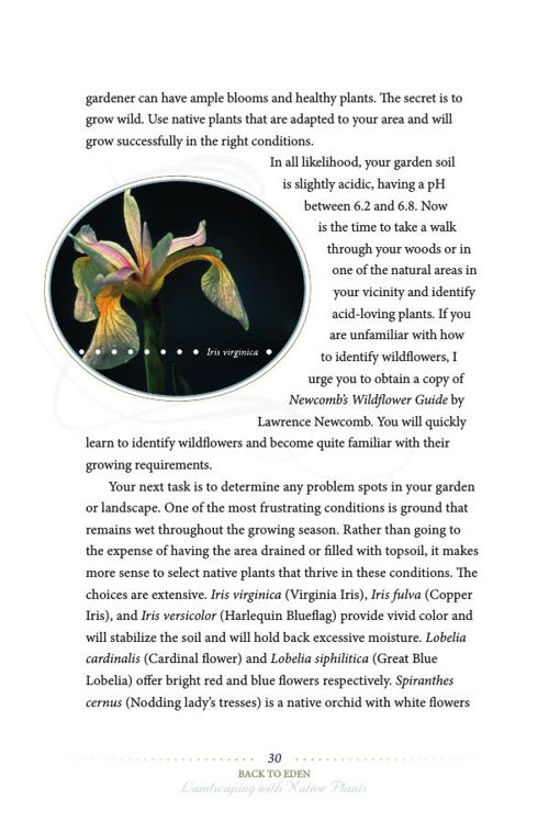 Back to Eden: Landscaping with Native Plants