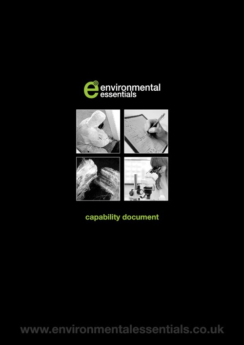Copy of Environmental Essentials