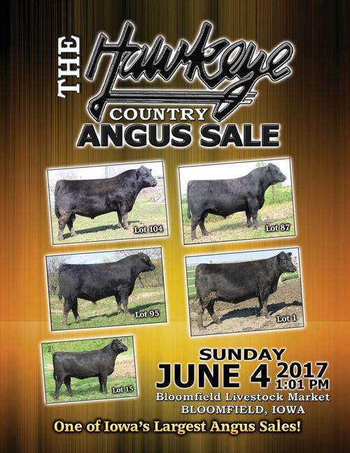 Hawkeye Country Angus Sale