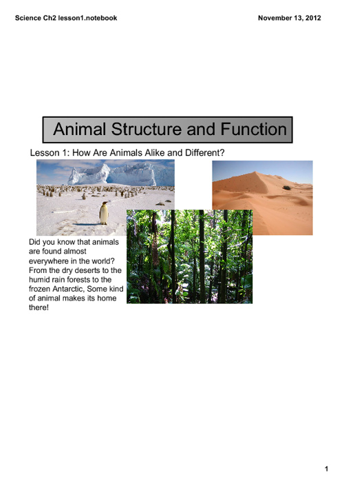 Animal Function and Structure