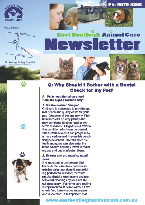 June 2011 Newsletter