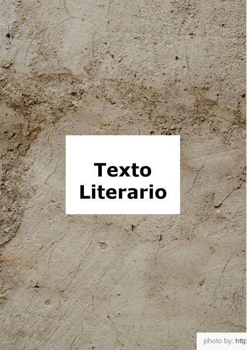 texto literario