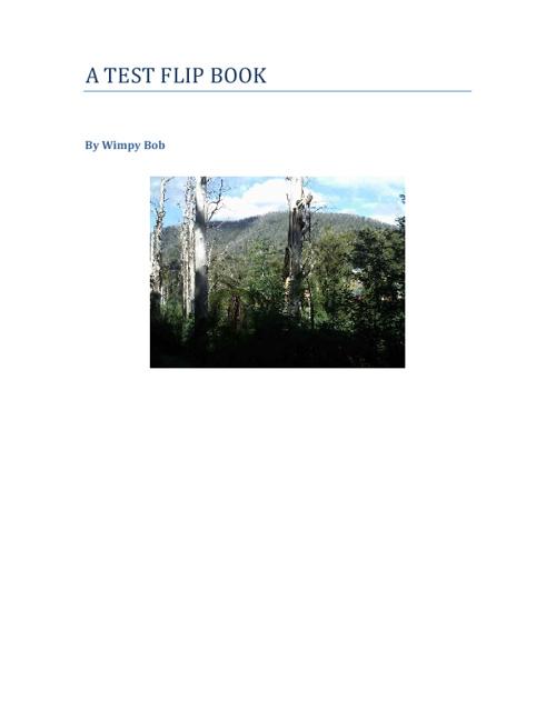 Wimpy Bob Flip Book!