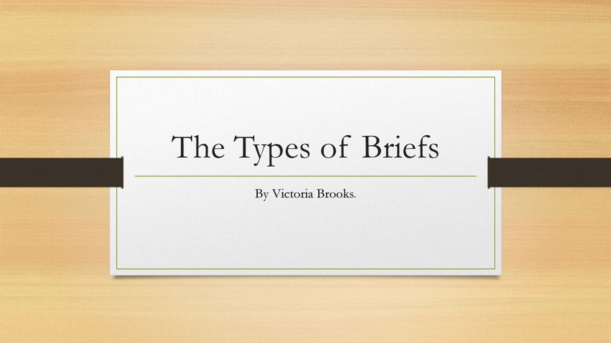 The Types of Briefs