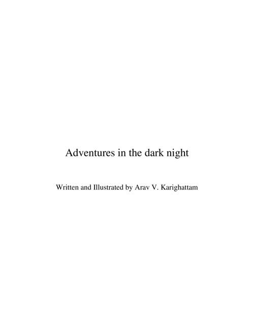 Adventures in the Dark Night