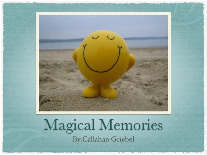 Mr. P's Memoirs 2013