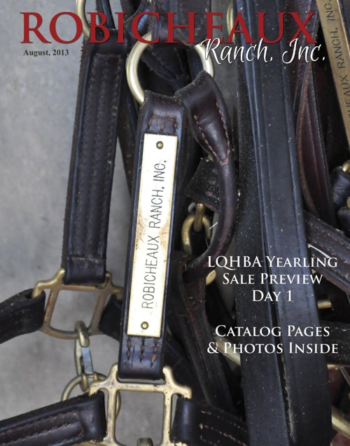 Robicheaux Ranch LQHBA Yearling Preview Day 1