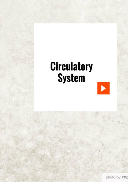 Circulatory System 2014