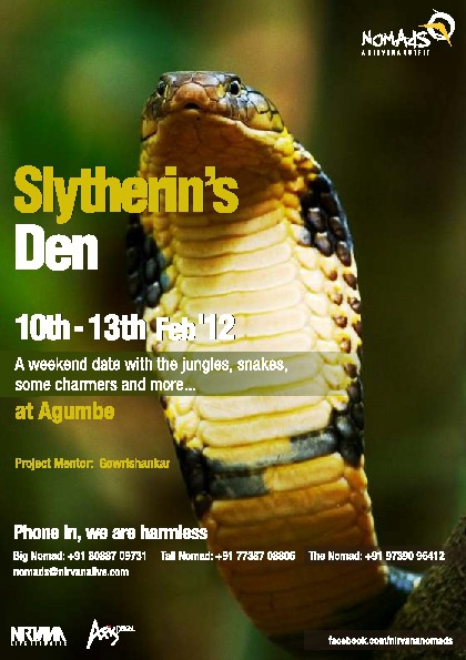 Slytherin's Den