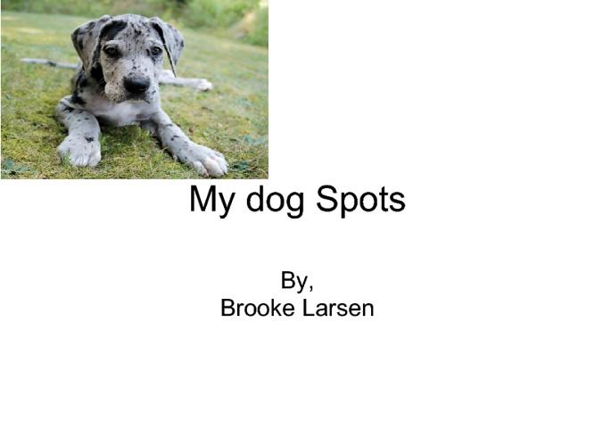 My dog Spots