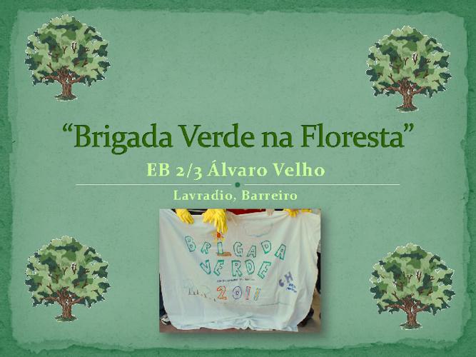 Brigada Verde na Floresta