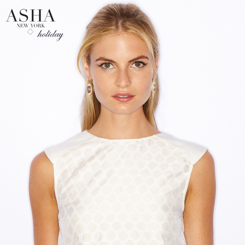 ASHA Holiday '13
