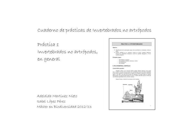 Prácticas de Invertebrados no artrópodos