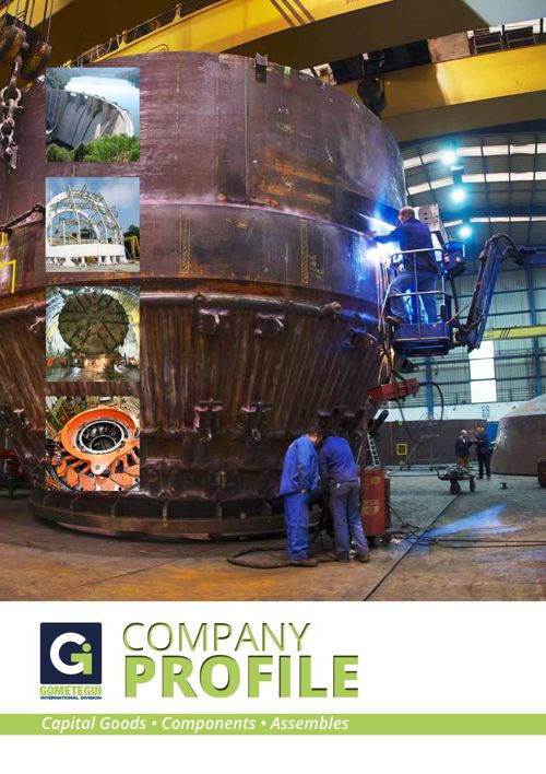 Company Profile proyecto Irán