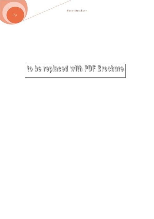phony brochure