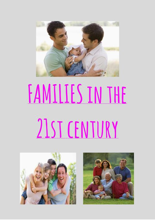 Year 11 NES Assignment: Families in the 21st Century - Stephanie