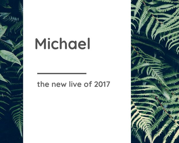Michael's goals for 2017