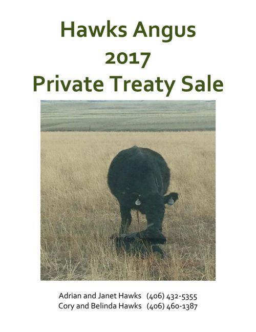 2017 Hawks Angus Private Treaty Sale