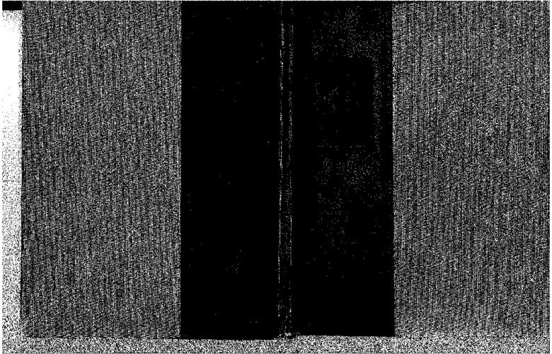 Copy of 54 Pioneer Flipbook