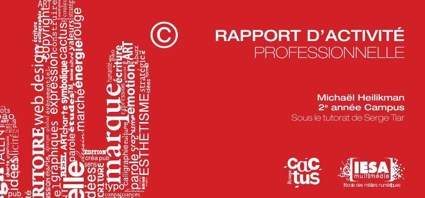 rapport de stage 2012