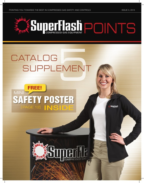 SuperFlash Points Issue 3 Vol 2013