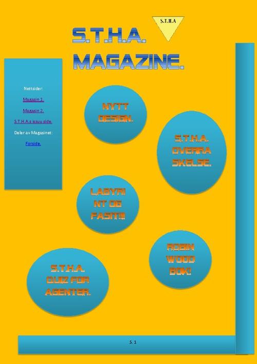 STHA magazine 3