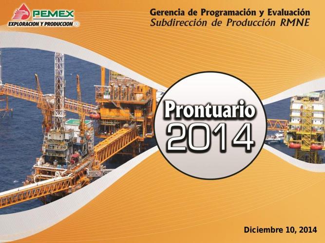 Prontuario 2014 RMNE