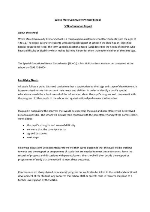 SEN Information Report (website)