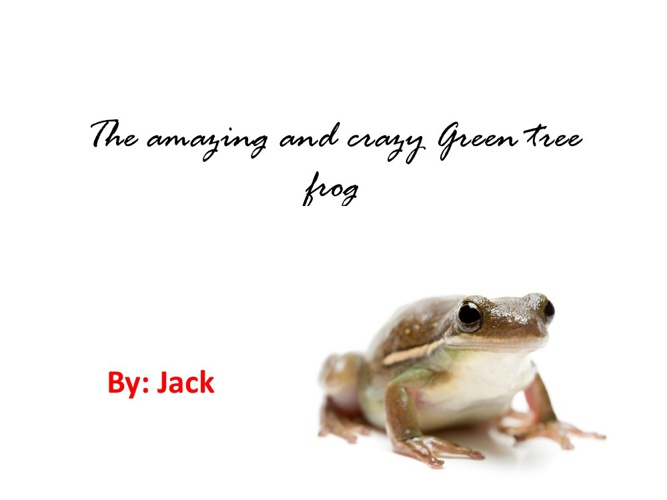 Jack's green tree frog