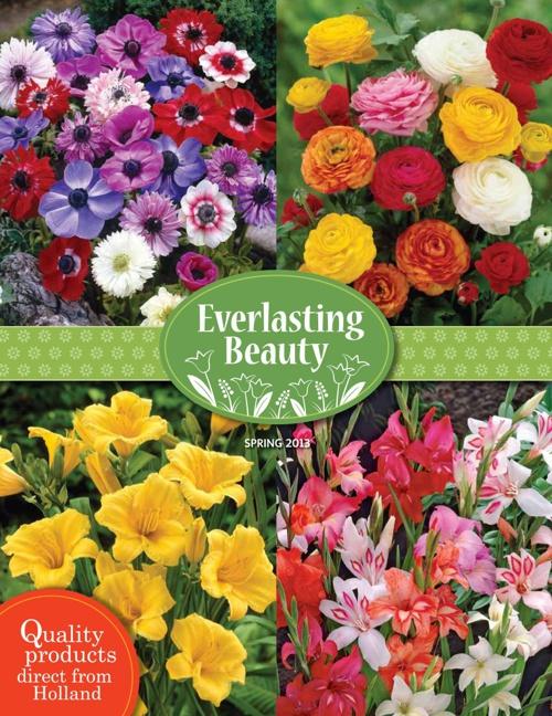 Spring 2013 Tag Catalog
