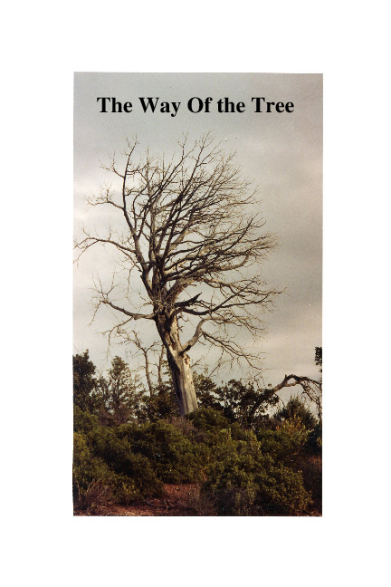 The Way of the Tree