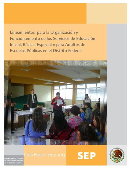 Lineamientos para la Organización y Funcionamiento