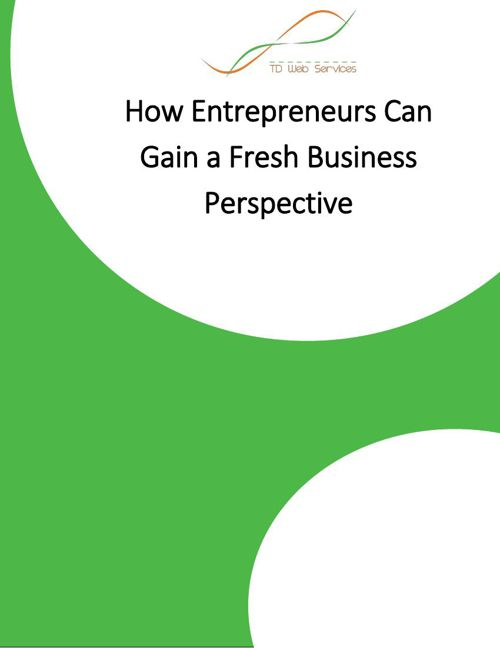 How Entrepreneurs Can Gain a Fresh Business Perspective