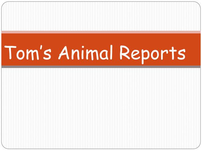 Resource 15 - Tom's Animal Reports