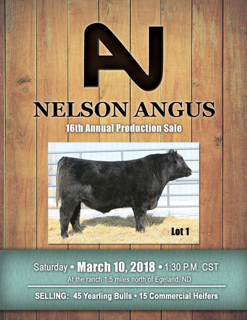 Nelson Angus 16th Annual Production Sale