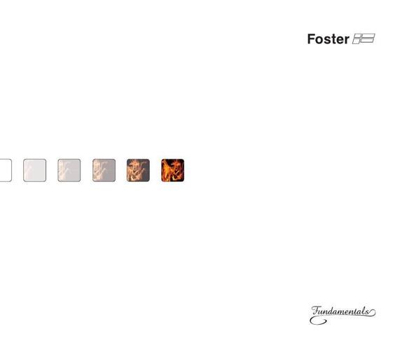 Foster Fundamentals 2014
