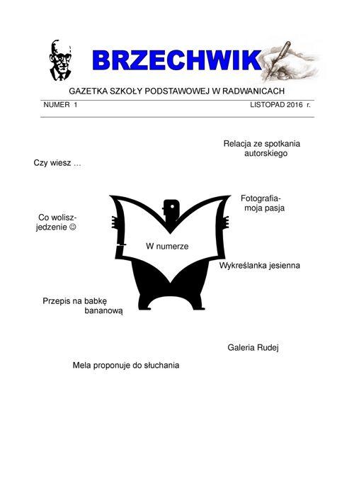 gazetka_1.16.17
