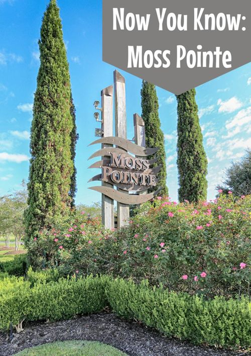 Now You Know: Moss Pointe