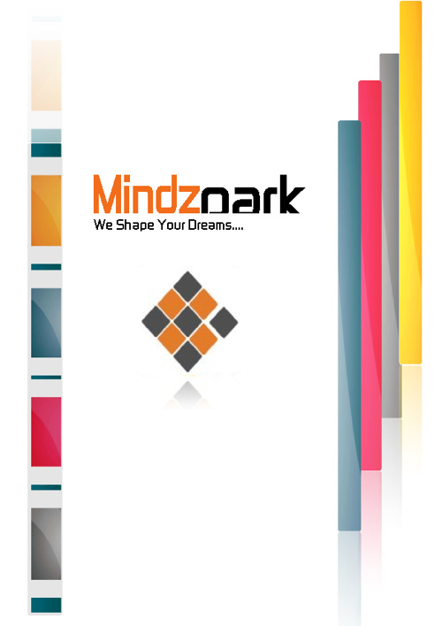 Mindzpark company Profile