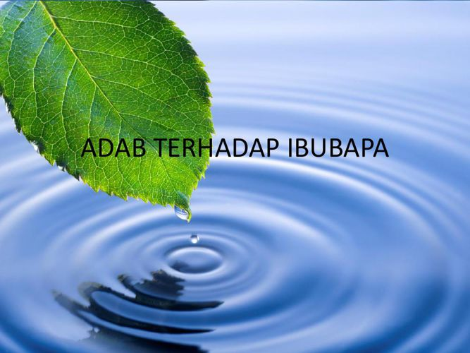 ADAB TERHADAP IBUBAPA ppt