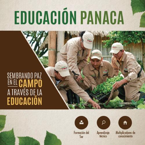 Brochure macrorueda