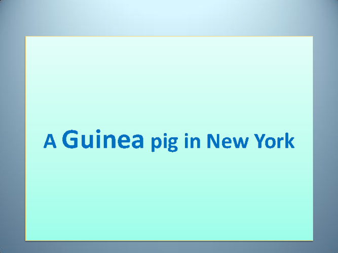 A GUINEA PIG IN NEW YORK