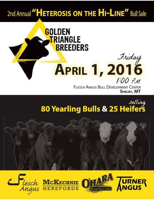 "2nd Annual ""Heterosis on the Hi-Line"" Bull Sale Catalog"
