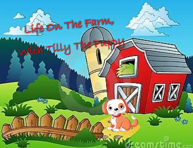 Life On The Farm, With Tilly The Puppy Madison Knipp