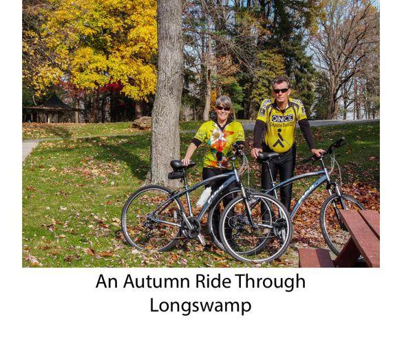 Autumn Longswamp