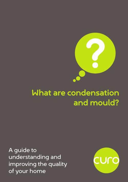 What are condensation and mould?