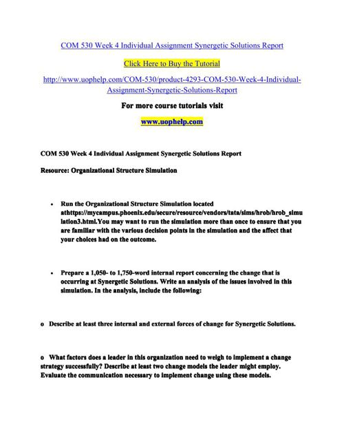 COM 530 Week 4 Individual Assignment Synergetic Solutions Report