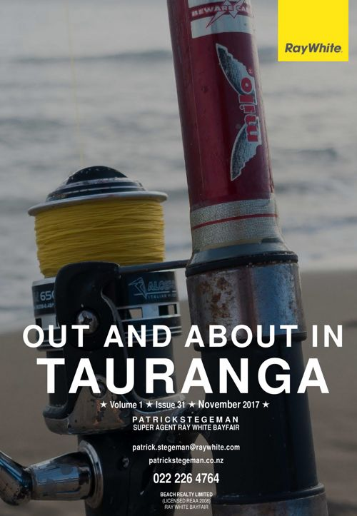 Tauranga Residential Real Estate Newsletter #031 - Nov 2017