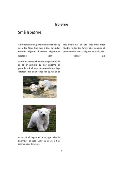 mmisbjørne mathilde m