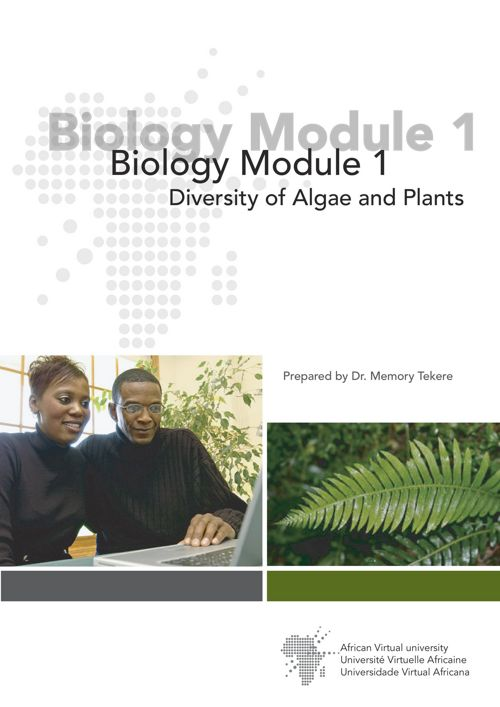 Diversity of Algae and Plants